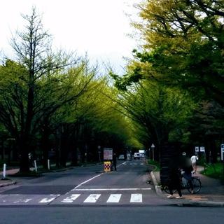 Point Blur_20170513_155319.jpg